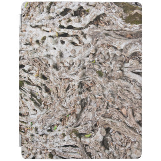 Tree root composition iPad cover