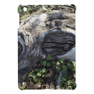 TREE ROOT iPad MINI CASE