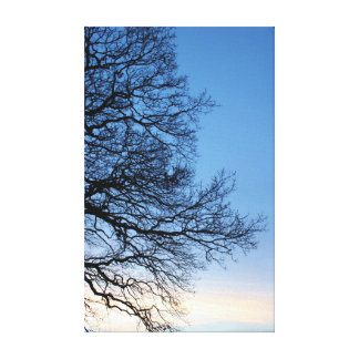 Tree Silhouette in a Blue Winters Sky Canvas Print
