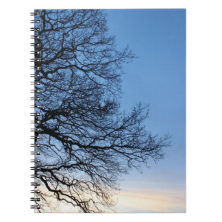 Tree Silhouette in a Blue Winters Sky Spiral Notebook