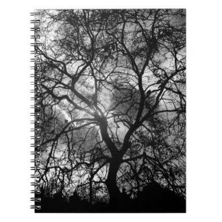 Tree Silhouette Notebooks
