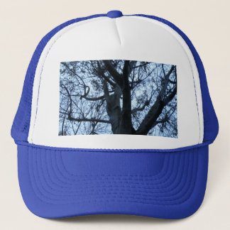 Tree Silhouette Photograph Hat