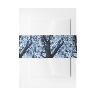 Tree Silhouette Photograph Invitation Belly Band