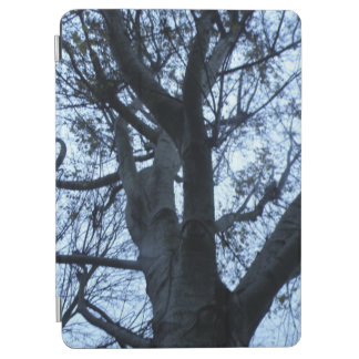 Tree Silhouette Photograph iPad Cover