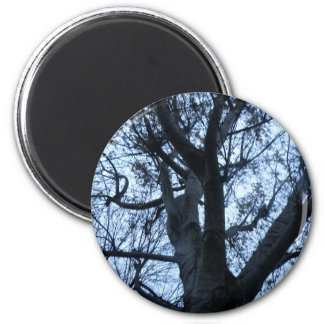 Tree Silhouette Photograph Magnet