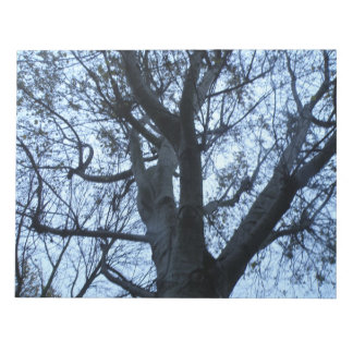 Tree Silhouette Photograph Notepad