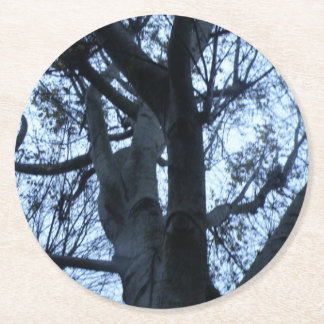Tree Silhouette Photograph Paper Coasters