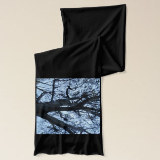 Tree Silhouette Photograph Scarf
