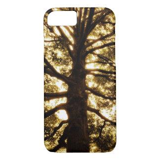 Tree Silhouette Sepia iPhone 7 Case