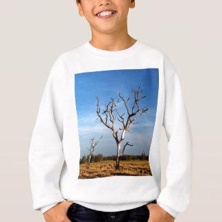 tree  silhouette sweatshirt