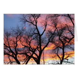 Tree Silhouettes at Dusk Card