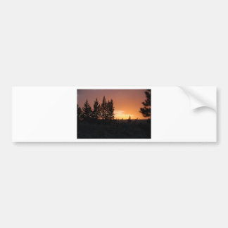 Tree Silhouettes at Sunset Bumper Stickers