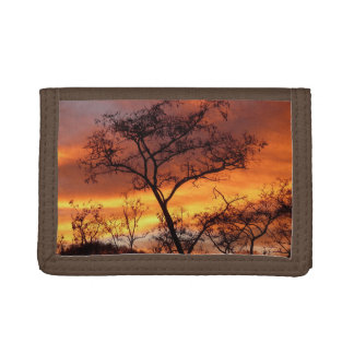 Tree Sky Nature Country Money Destiny'S Destiny Tri-fold Wallet