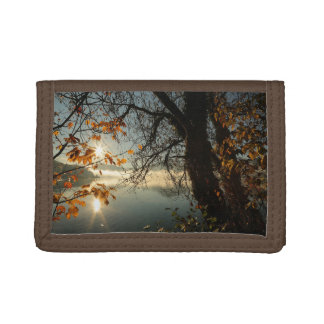 Tree Sky Nature Country Money Destiny'S Destiny Trifold Wallets