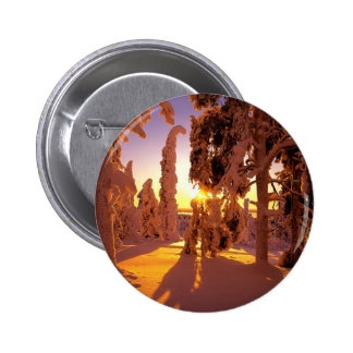 Tree Snow Covered Forest Finland Pinback Button