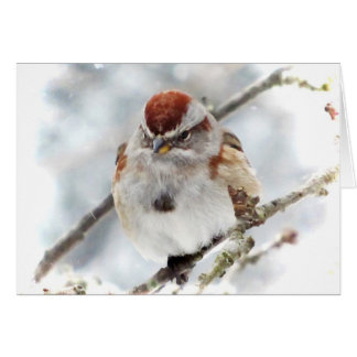 Tree Sparrow in Winter Card