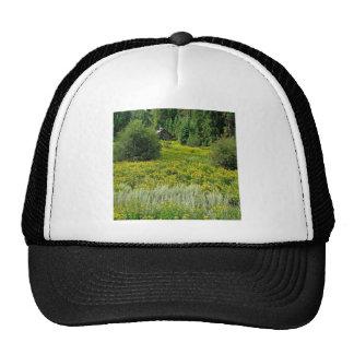 Tree Spring Woods Trucker Hat