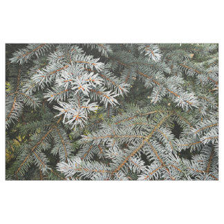 Tree spruce branches photo fabric