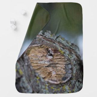 Tree Stump Photography Baby Blanket