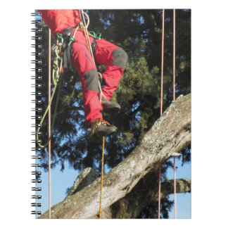 Tree surgeon lumberjack hanging from a big tree notebook