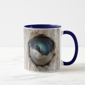 Tree Swallow in a Nestbox Mug