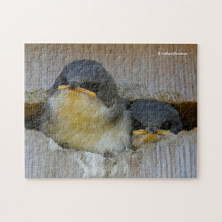 Tree Swallows Looking Out at the Big Wide World Jigsaw Puzzle