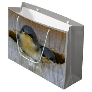 Tree Swallows Looking Out at the Big Wide World Large Gift Bag