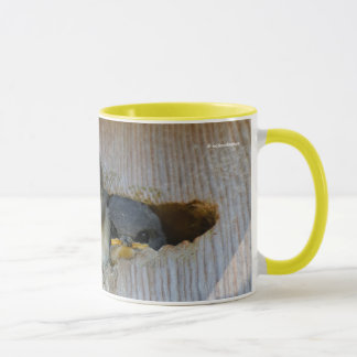 Tree Swallows Looking Out at the Big Wide World Mug