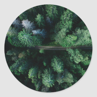 Tree top forest with hiking path colorful green round sticker