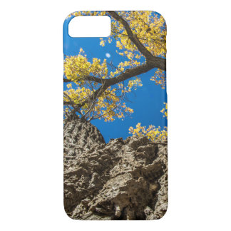 Tree top iPhone 8/7 case