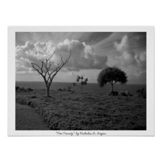 """Tree Trinity"" Black and White Professional Poster"
