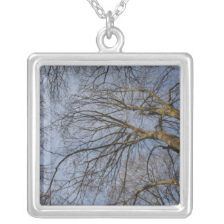 Tree trunk design/pattern. Pioineer Park, WA Square Pendant Necklace