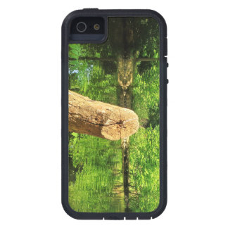 Tree Trunk Nature Photography Lake Park iPhone 5 Cases