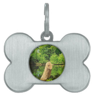 Tree Trunk Nature Photography Lake Park Pet Name Tag