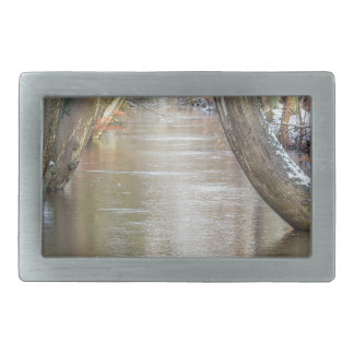 Tree trunks and forest stream  with snow in winter belt buckles