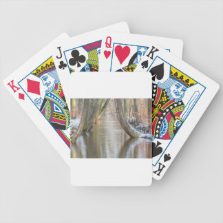 Tree trunks and forest stream  with snow in winter bicycle playing cards