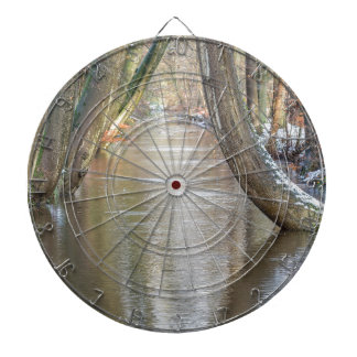 Tree trunks and forest stream  with snow in winter dartboard