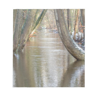 Tree trunks and forest stream  with snow in winter notepad