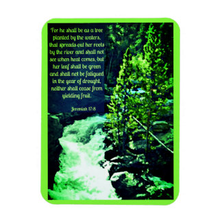Tree Waterfall Scripture Magnet