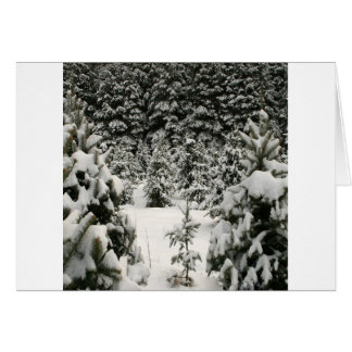 Tree Winter Wonderland Greeting Card
