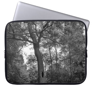 Tree with a Mysterious Hole Laptop Computer Sleeve