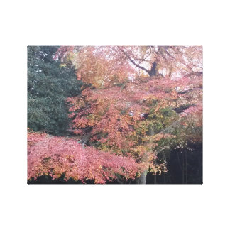 Tree with pink leaves pretty autumn colours canvas print