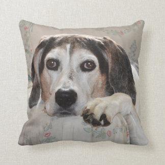 Treeing Walker Coonhound Cushion