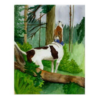 Treeing Walker Coonhound Dog Portrait Poster