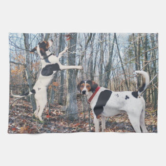 Treeing Walker Coonhound Kitchen Towel