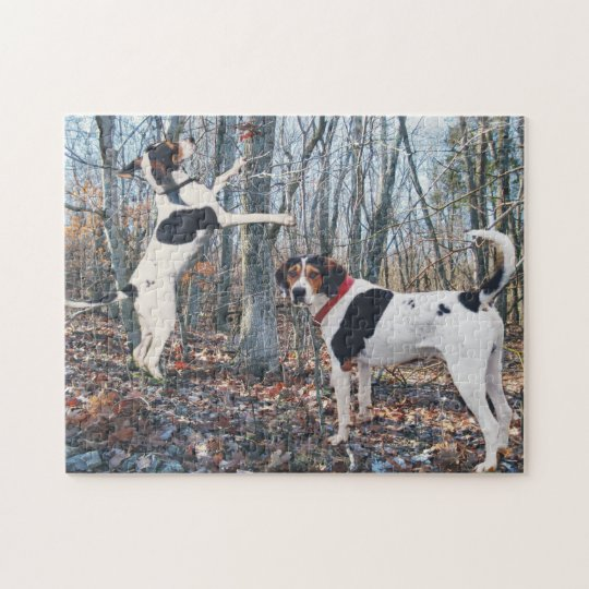 Treeing Walker Coonhounds Hunting Jigsaw Puzzle
