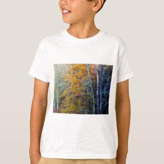 TREELINE IN AUTUMN T-SHIRTS