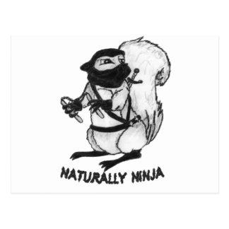 Treerat Ninja Postcard