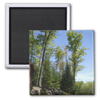 Trees and Blue Sky Scene Magnet