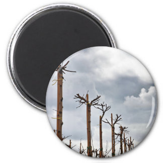 Trees and clouds 6 cm round magnet